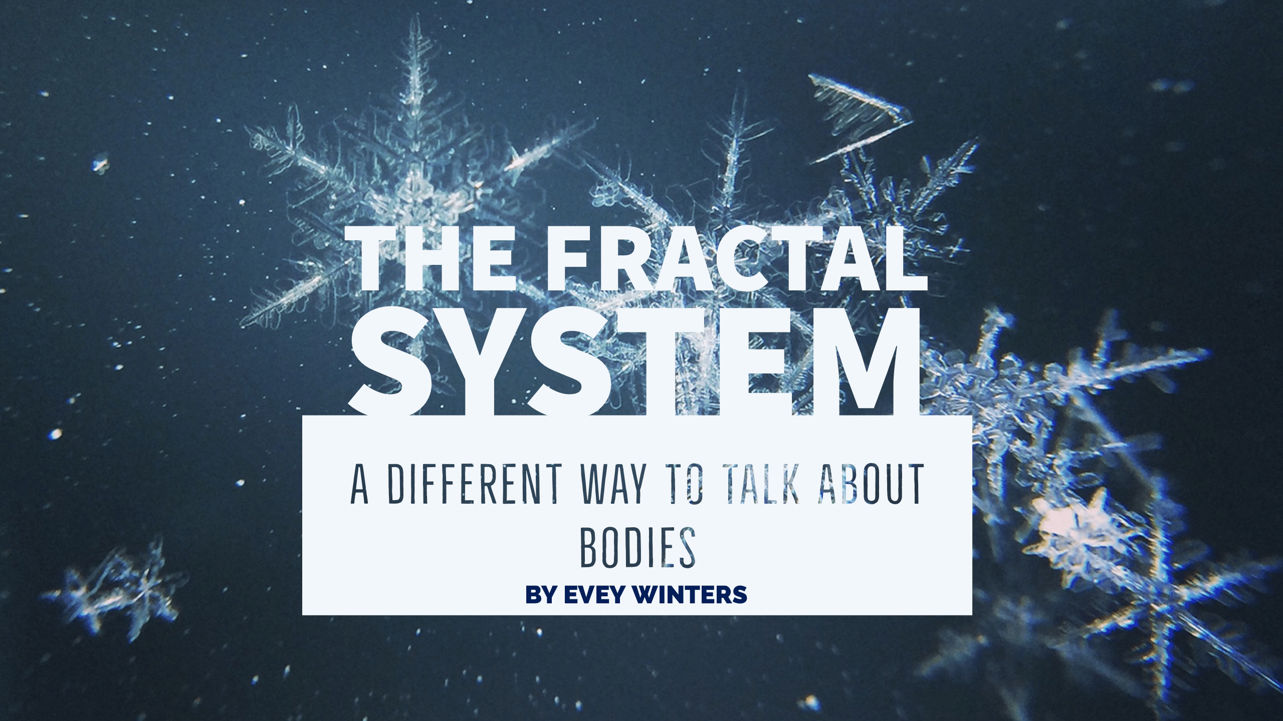 The Fractal System: A Different Way to Discuss Bodies